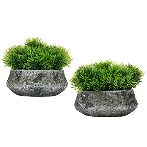 MyGift 6-Inch Faux Green Leaf Plant Arrangement in Rustic Cement Pots, Set of 2