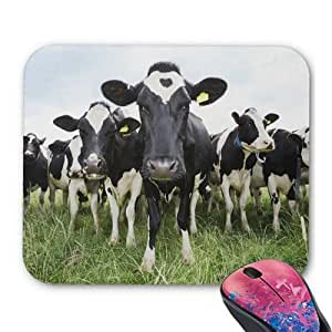 Cows Standing In A Row Looking At Camera Personalized Rectangle Mouse Pad Oblong Gaming Mousepad Office Accessory And Gift In 9.25x7.25 Inch
