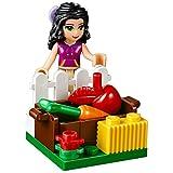 LEGO Friends - 41123 - Le Toilettage Du Poulain