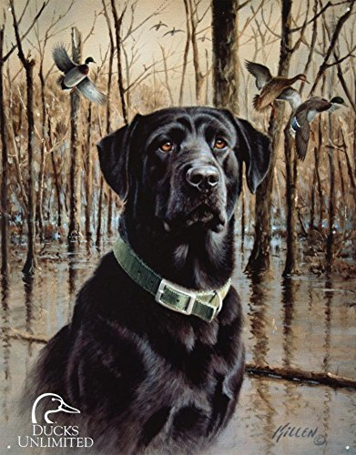 "DUCKS UNLIMITED - Great Retrievers Metal Tin Sign 12.5W x 16""H , 13x16"