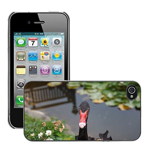 Bild Hart Handy Schwarz Schutz Case Cover Schale Etui // M00135050 Black Swan Swan Tiere // Apple iPhone 4 4S 4G