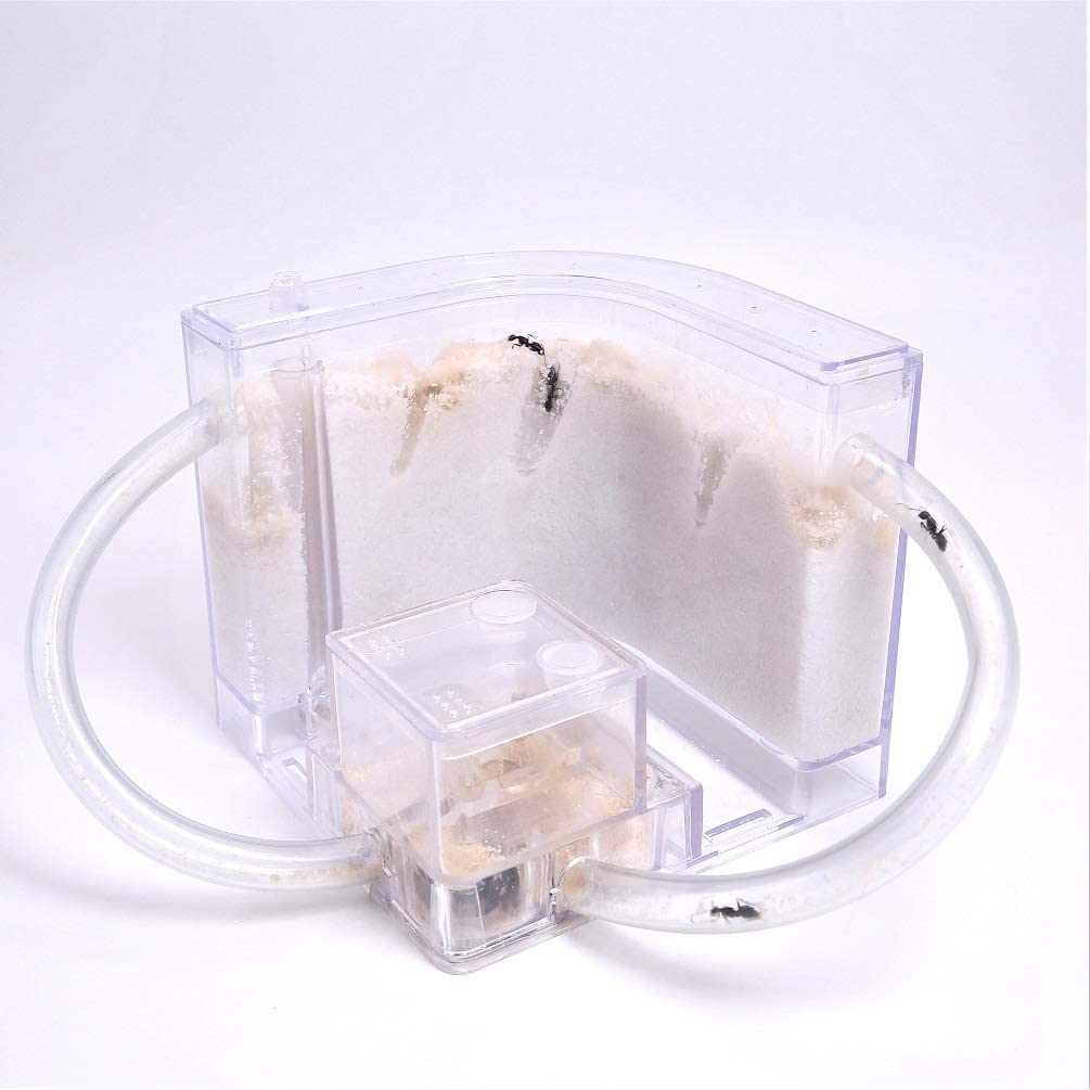 NAVAdeal Sand Ant Farm with Connecting Tubes Habitat Educational /& Learning Science Kit Toy For Kids /& Adults Allows Study of Ecosystem Explore The World At Home and School Behavior of Ants