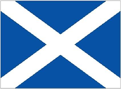 blau Supportershop FLGSCO Flagge 150 x 90 cm