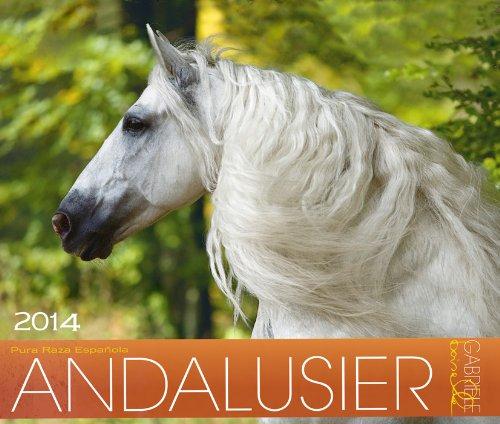 Andalusier 2014 Kalender: Andalusische Pferde - 46x39 cm