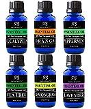 Radha Beauty Aromatherapy Top 6 Essential Oils