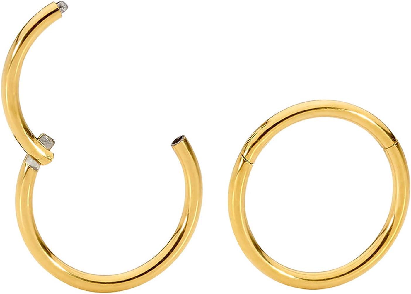 16mm 13mm 8mm 7mm 10mm 14mm 9mm 6mm 365 Sleepers 1 Pair Stainless Steel 16G Hinged Segment Ring Hoop Sleeper Earrings Body Piercing 5mm 12mm 11mm