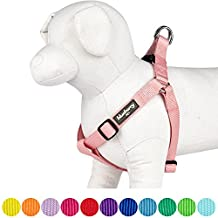 """Blueberry Pet Step-in Classic Dog Harness, Chest Girth 16.5"""" - 21.5"""", Baby Pink, Small, Adjustable Harnesses for Dogs"""