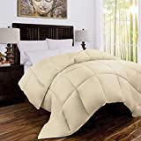 J&V TEXTILES Organic Sustainable Bamboo Down-Alternative Hypoallergenic Queen Comforter (IVORY)