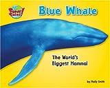 Blue Whale, Molly Smith, 1597163856