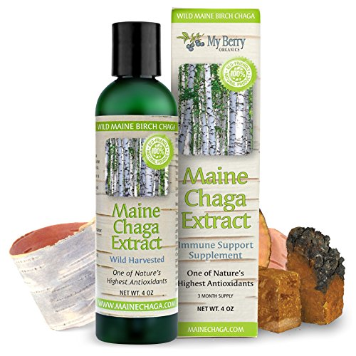 Maine Chaga Extract, With Natural Vitamin B3 For Skin Health, Large 4 oz. Economy Size, Double Extraction,100% Wild Harvested, No Part is Cultivated, NOT Sourced From Siberia