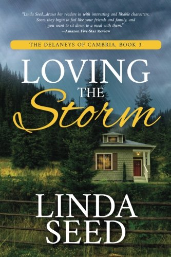 Loving the Storm (The Delaneys of Cambria) (Volume 3)