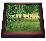 3dRose trv_13747_1 Elk Herd in the Rockies Trivet with Tile, 8'' x 8''