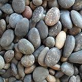 Jaanvi Granites Unpolished River Pebbles(2kg)