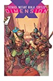 img - for Teenage Mutant Ninja Turtles: Dimension X book / textbook / text book