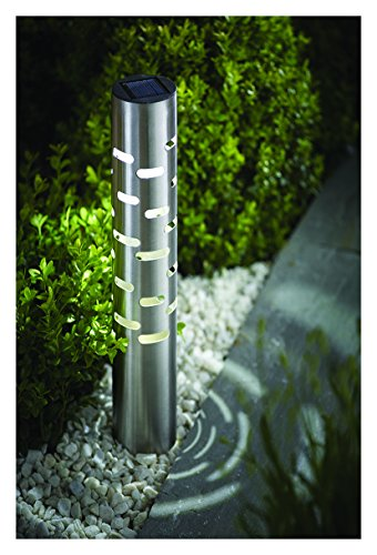Cole Bright Solar Garden Lights in US - 3