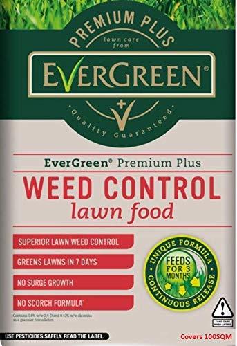 Evergreen Premium Plus Alimentación y hierba césped, 100m