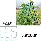 Mr.Garden Trellis Netting For Climbing Plants, Green Color (5.9Ft x 8.8Ft)