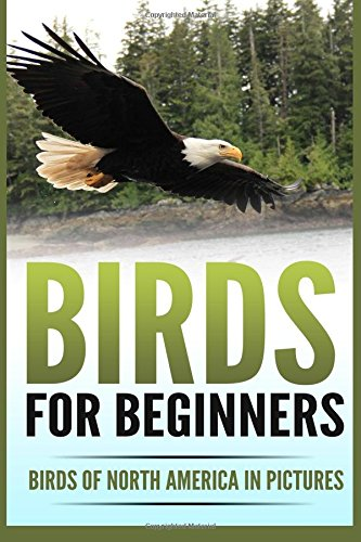Download Birds for Beginners: Including 97 Birds of North America in Gorgeous Pictures pdf epub
