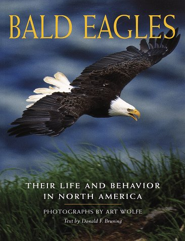 Bald Eagle Facts - Bald Eagles: Their Life and Behavior in North America