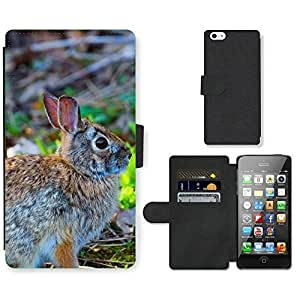 Hot Style Cell Phone Card Slot PU Leather Wallet Case // M99999011 Rabbit // Apple iPhone 5 5S 5G