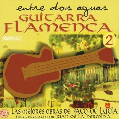 Entre Dos Aguas-Guitarra Flame: Various Artists: Amazon.es: Música