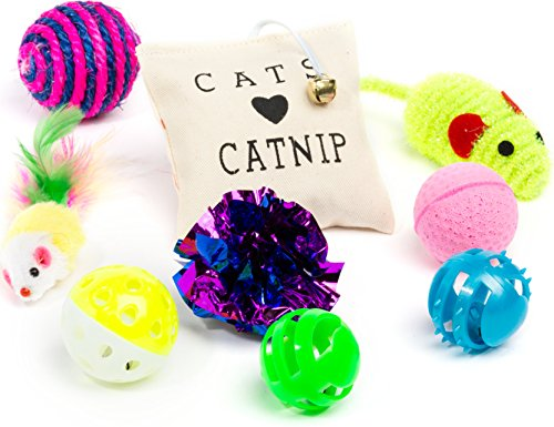 Friends-Forever-Kitten-Toys-Variety-Pack-Cat-Toys-Set-Including-Cat-Fishing-Pole-Catnip-Pillow-Lot-More-Cute-Kitty-Toys-for-Cats-20-Pieces
