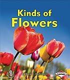 Flowers, Sara Hoffmann, 1467705004