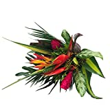 #3: BloomsyBox Tropical Bouquet -Fuego, 1.5 lb