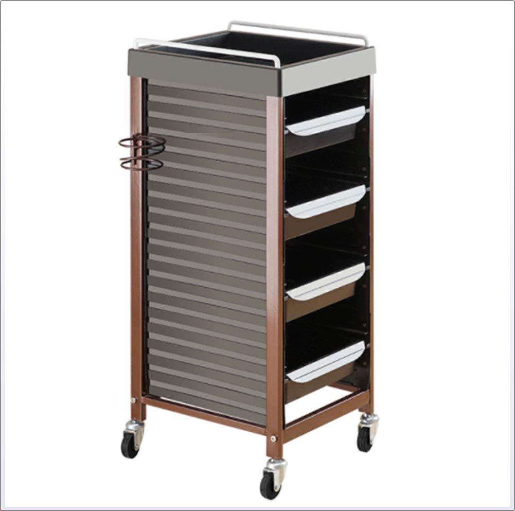 Sxwz Hairdressing cart Hair Salon Tool cart 5 Drawers Hair Dryer Tray Metal Tool Storage cart Universal Wheel Trolley,B