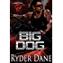 Big Dog: Burning Bastards MC Book 1