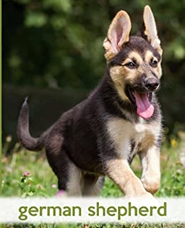 Buy German Shepherd With Puppies Online At Low Prices In India
