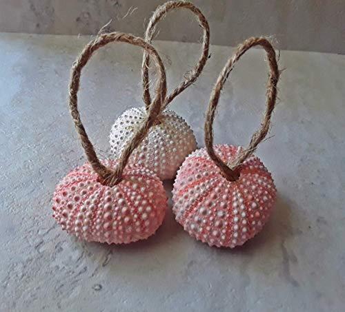 - Sparkle Urchin Ornaments Jute Ribbon Set of 12