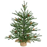 Vickerman Carmel Pine Tree with Pine Cones Review and Comparison