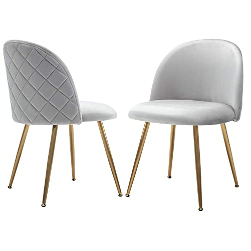 Chairus Modern Dining Chairs Set for Small Table, Velvet Upholstered Side Chairs for Living Room, Accent Chairs with Gold Metal Legs, Set of 2, Light Gray Chairs