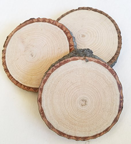 20 Wood Slices small 1.5
