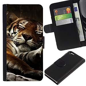 """Apple (4.7 inches!!!) iPhone 6 , la tarjeta de Crédito Slots PU Funda de cuero Monedero caso cubierta de piel ("""" Tiger Sleepy Big Cat Cute Animal Nature"""")"""