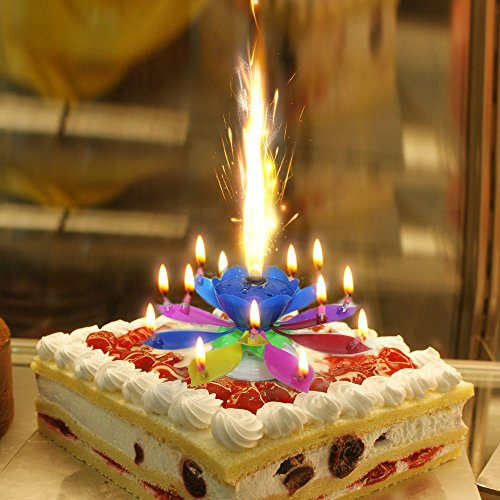 Easy GiftR The Amazing Happy Birthday Candle Romantic Musical Flower