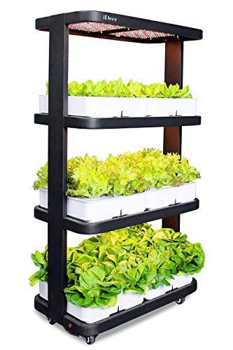iDeer Life Mine Kitchen, Smart Indoor Gardening System w/LED Plant Grow Light, Hydroponics Indoor Herb Garden, Multi-Layer Planting w/Moving Wheel, Indoor Gardening Kit -72 Plants (IDE880295 Black) by iDeer Life