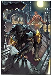 Black Panther: The Man Without Fear Volume 1: Urban Jungle (Black Panther (Unnumbered))