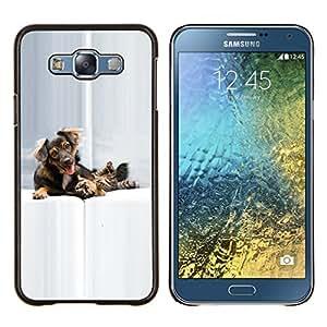 KLONGSHOP // Cubierta de piel con cierre a presión Shell trasero duro de goma Protección Caso - Gato Perro Perrito de oro Setter - Samsung Galaxy E7 E700 //