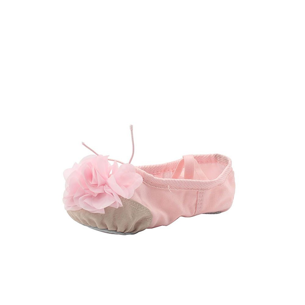 Woman's Canvas Ballet Practise Dance Shoes with Flower,Pink,7 M US