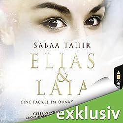 Eine Fackel im Dunkel der Nacht (Elias & Laia 2)