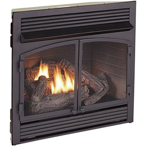Procom Dual Fuel Fireplace Insert Zero Clearance Home Essentials