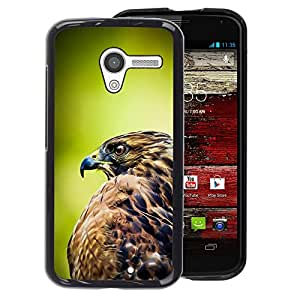 A-type Arte & diseño plástico duro Fundas Cover Cubre Hard Case Cover para Motorola Moto X 1 1st GEN I (Hawk Green Nature Feathers Bird Prey)