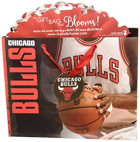 Turner Licensing Sport Chicago Bulls Medium Gogo Gift Bag (8932037)