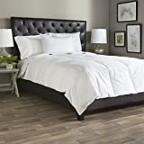 Cozy Clouds CozyClouds by DownLinens White Goose Down Comforter King