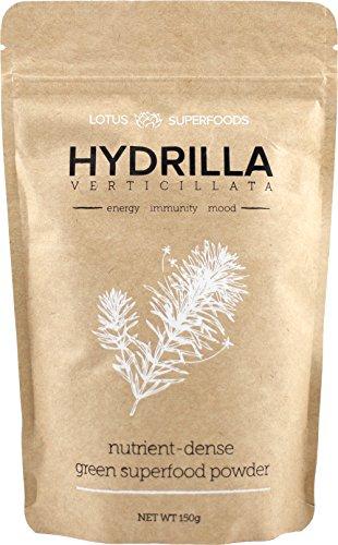 Hydrilla Verticillata - Raw Green Superfood Powder, Vegan, Wildcrafted - (150g) - Lotus Superfoods