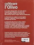 Image de Coltivare l'olivo. Le varietà, le forme di allevamento, le cure dall'impianto alla produzione dell'olio