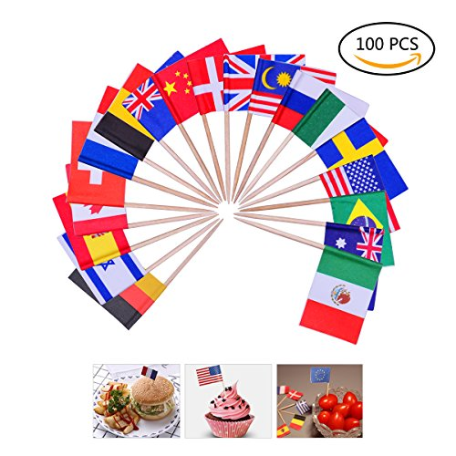 YoungRich 100 Pack World Flag Sticks International Flags and Banners Toothpicks Cocktail Sticks Cupcake Picks Banner Innovative Design One-off for Bar Sports Clubs Party Events Decoration Multicolor (Little Toothpick)