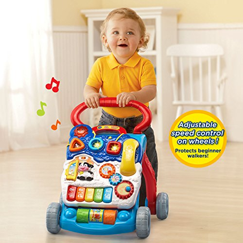 Vtech Sit To Stand Learning Walker Blue Buy Online In